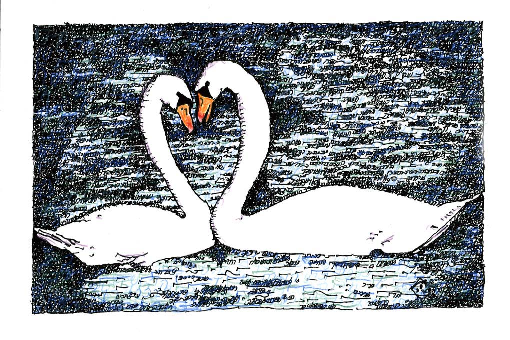 Romantic Swan Couple – Song of Songs in Color